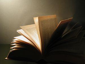 Plastic books